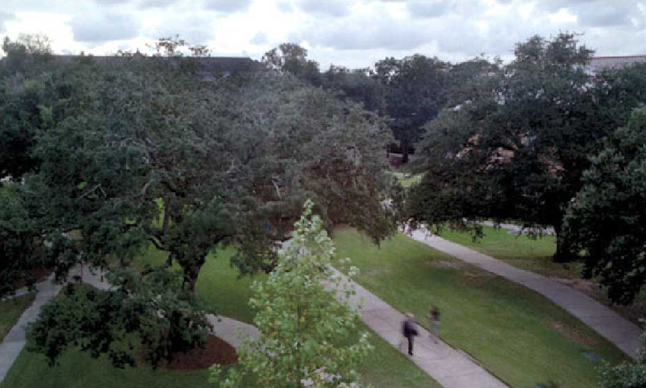 Overhead View of Tulane Campus - The Murphy Institute